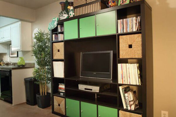 medium-living-room-area-at-student-apartments-in-denton